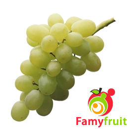 Thompson Seedless o Sultanina
